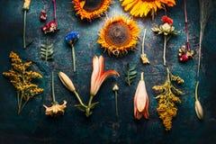 秋天秋天花卉舱内甲板位置由花、向日葵、叶子和canina莓果做成在土气葡萄酒背景,顶视图 免版税库存图片