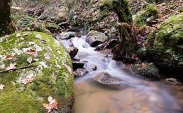 秋天秋天风景在有流动的溪河的美丽的五颜六色的森林里ong曝光的 库存图片