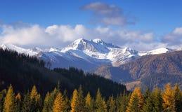 秋天积雪覆盖的山晚上视图  免版税库存图片