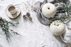 秋天称呼了照片 女性万圣夜桌面场面 咖啡,玉树,杉木锥体,白色南瓜和 图库摄影