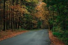 秋天空的路 免版税库存图片