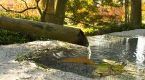 秋天竹子喷泉 免版税库存照片