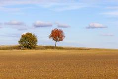 秋天简单的风景 免版税库存照片