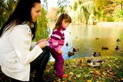 秋天系列公园年轻人 库存图片