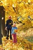 秋天系列槭树公园 库存图片