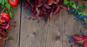 秋天红色叶子、苹果和绿色之前构筑的木背景 免版税库存图片