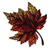 秋天红色叶子 库存照片