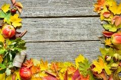 秋天红色,绿色和黄色叶子、橡子和苹果平的位置框架在葡萄酒木背景 免版税图库摄影