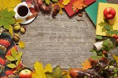 秋天红色,绿色和黄色叶子、橡子和苹果平的位置框架在葡萄酒木背景 库存图片