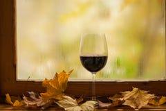 秋天红葡萄酒 免版税库存照片