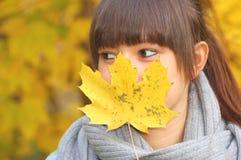 秋天纵向 库存照片