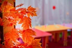 秋天纹理和背景在屋子里 槭树背景在秋天颜色的与您自己的文本的室 免版税库存照片