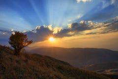 秋天结构树和光芒四射的日落 免版税库存照片