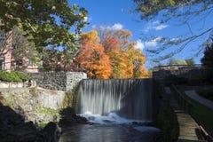 秋天结构树瀑布 免版税库存图片