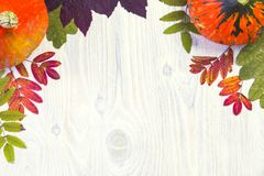 秋天结构的在白色木背景的叶子南瓜 免版税库存图片
