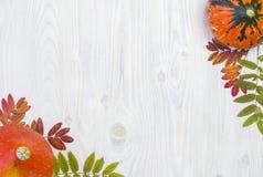 秋天结构的在白色木背景的叶子南瓜 免版税图库摄影