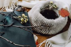 秋天结构的笔记本、玻璃、围巾、叶子和羽毛在木背景 免版税图库摄影