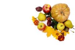 秋天结构的蔬菜和水果,南瓜,苹果,在白色背景的梨 平的时髦位置的顶视图 免版税库存图片