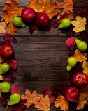 秋天绯红色和黄色叶子、梨和ap平的位置框架  库存照片