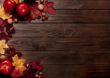 秋天绯红色和黄色叶子,榛子, w平的位置框架  免版税库存图片