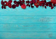 秋天绯红色平的位置框架在木离开和核桃 免版税库存图片