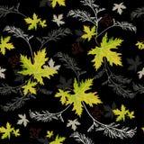秋天绿色叶子 免版税库存照片