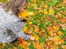 秋天美丽的公园妇女 妇女在有五颜六色的槭树的秋天公园离开 翠菊许多秋天的紫红色心情粉红色 库存图片