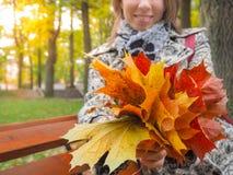 秋天美丽的公园妇女 妇女在有五颜六色的槭树的秋天公园离开 翠菊许多秋天的紫红色心情粉红色 图库摄影