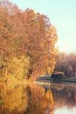 秋天美丽的公园 秋天在米斯克 秋叶结构树 秋天横向 公园在秋天 树的镜象反射在wa的 免版税图库摄影