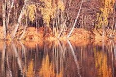 秋天美丽的公园 秋天在米斯克 秋叶结构树 秋天横向 公园在秋天 树的镜象反射在wa的 图库摄影