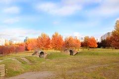 秋天美丽的公园 秋天在米斯克 秋叶结构树 秋天横向 公园在秋天 森林在秋天 免版税库存图片