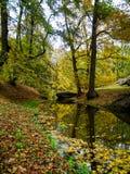 秋天美丽的公园 库存图片