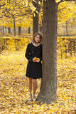 秋天美丽的女孩公园浪漫年轻人 免版税库存照片