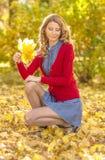 秋天美丽的女孩公园 图库摄影