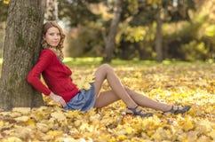 秋天美丽的女孩公园 免版税库存照片