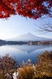 秋天美丽的富士日本mt 库存照片