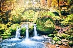 秋天美丽的森林瀑布 免版税库存照片