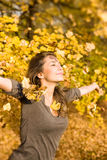 秋天美丽的深色的公园 库存照片