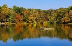 秋天美丽的结构树的湖。 库存图片