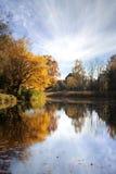 秋天美好的早晨 免版税库存照片