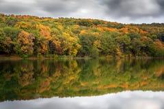 秋天美好的横向 绿色金黄森林在水湖反射 库存图片