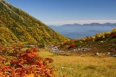 秋天美好的横向 免版税图库摄影
