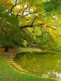 秋天美好的湖横向端 免版税库存照片