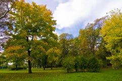 秋天美好的田园诗横向 免版税库存照片