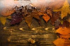 秋天背景、看法通过湿玻璃在木头和下落的叶子 水或雨水滴在透明玻璃和 库存图片