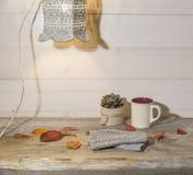 秋天背景、羊毛手套、五颜六色的叶子、多汁植物、咖啡在葡萄酒木桌上的和减速火箭的灯 库存照片