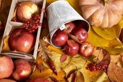 秋天背景、水果和蔬菜在黄色下落的叶子,苹果和南瓜,装饰在乡村模式,被定调子的棕色 免版税库存图片