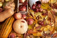 秋天背景、水果和蔬菜在黄色下落的叶子,苹果和南瓜,装饰在乡村模式,被定调子的棕色 免版税图库摄影