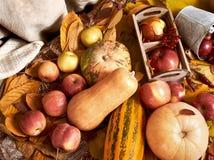 秋天背景、水果和蔬菜在黄色下落的叶子,苹果和南瓜,装饰在乡村模式,黑褐色口气 免版税库存照片