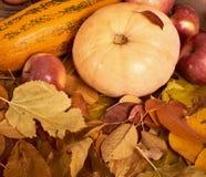 秋天背景、水果和蔬菜在黄色下落的叶子 库存图片